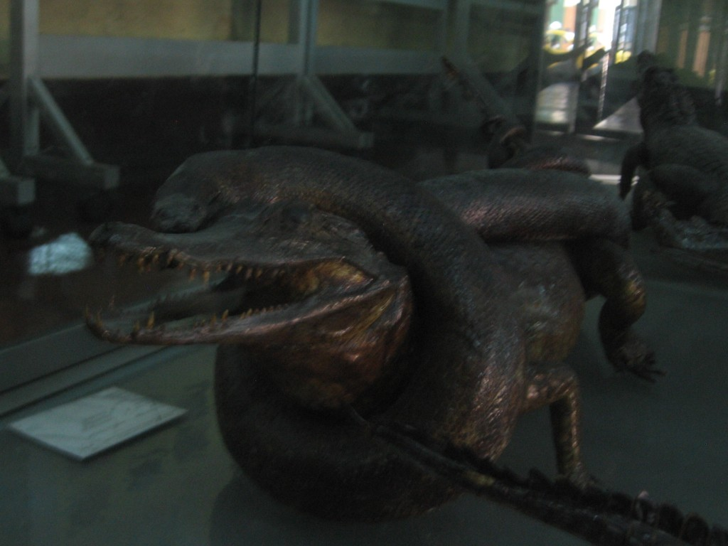 reptile on reptile violence...